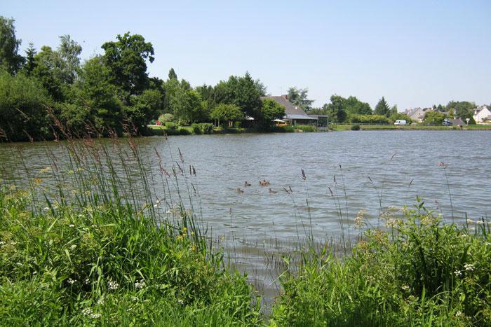 Un des étangs de pêche à proximité